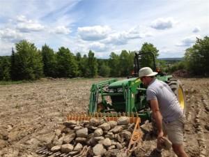 érochage travail au champ ail du Québec