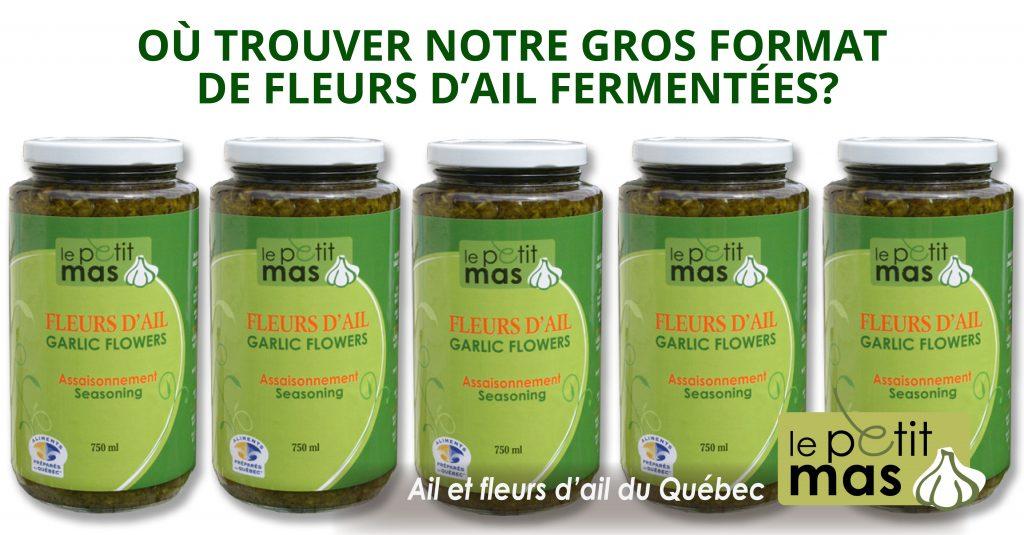 Ou Trouver Notre Gros Format De Fleurs D Ail Fermentees Dans L Huile