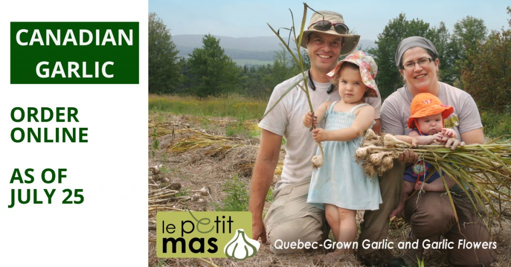 canadian-garlic-irder-online