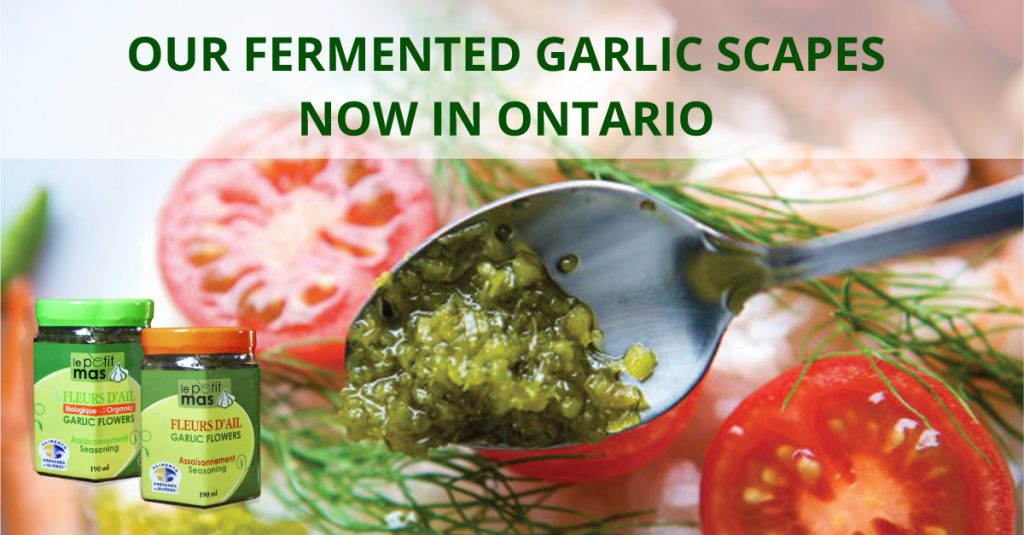 Le Petit Mas fermented garlic scapes now in Ontario