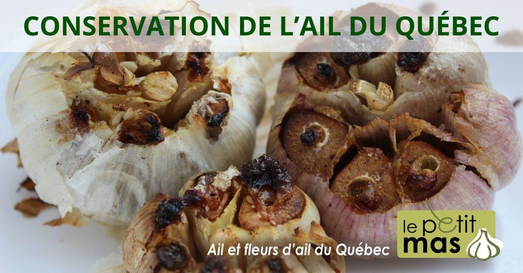 conservation de l'ail du quebec